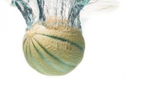 melon-actu-dietetique-aout