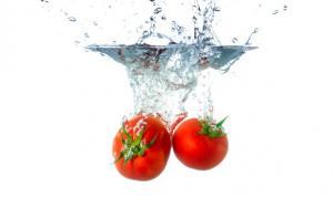 tomate_actualite_dietetique_septembre
